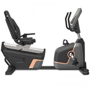 دوچرخه ثابت پشتی دار تایگر اسپرت مدل 6566 PRO